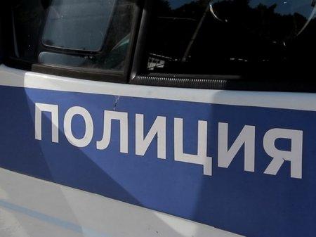 На Лубянке в День России задержали дававшую интервью участницу Pussy Riot Никульшину (видео)