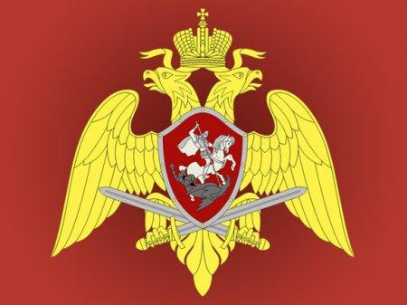 В России вводятся штрафы за неповиновение Росгвардии
