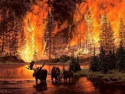 Лесные пожары в России: в восьми регионах действует режим ЧС