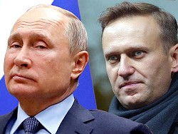 Блокировка сайтов Навального как животный страх Кремля