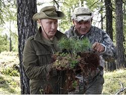 На месте сгоревших лесов в Якутии появятся Шойгограды