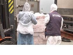 В Волгограде сожгут 18 тонн свинины