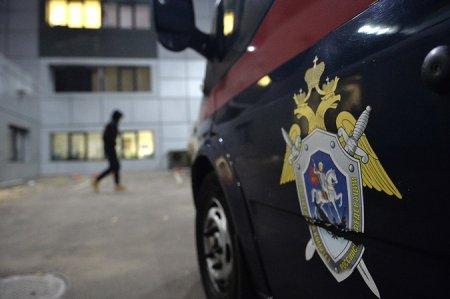 Уголовное дело возбуждено по факту избиения школьницы в Подмосковье
