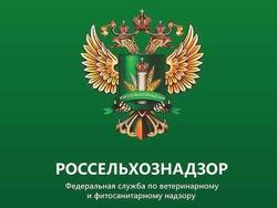 Белорусские фермеры не пустили к себе в хозяйства инспекторов Россельхознадзора