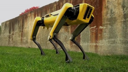 Видео Boston Dynamics с новым робопсом покорило Сеть
