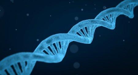 Для новой цивилизации. Китай вывел на орбиту первый космический банк генов